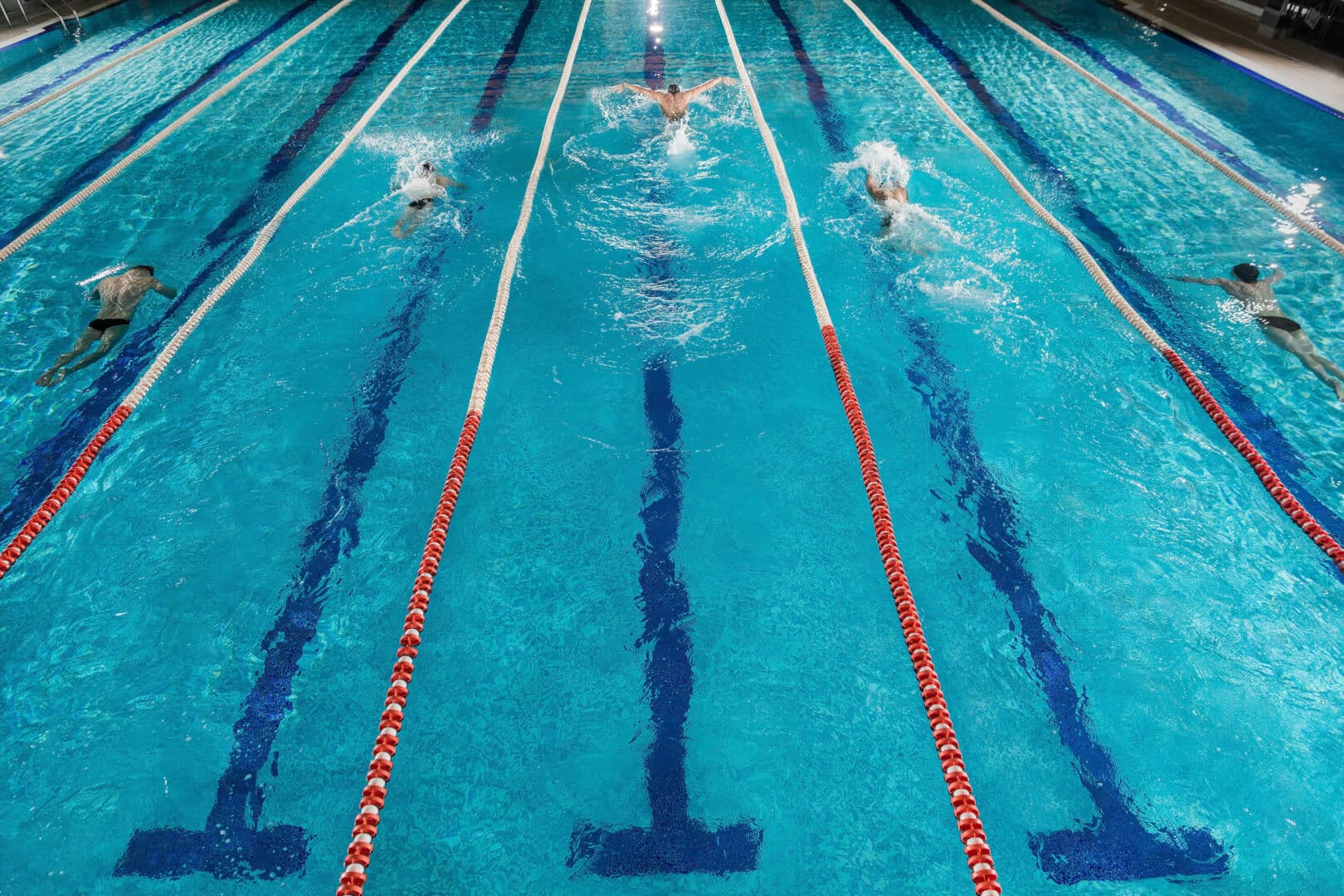 five swimmers racing against each other swiming pool